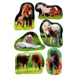 Etikety Decor fotky koníkov