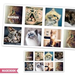 Samolepky - mačky