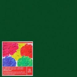 Hodvábny papier 1050-12
